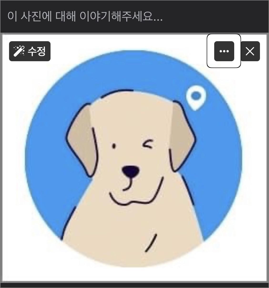 강아지 사진이 업로드돼 있는 게시글 편집창 위 더보기 버튼으로 초점이 가 있어 강조돼 있는 이미지